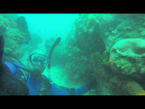 scuba diving US Naval Station Guantanamo Bay Cuba