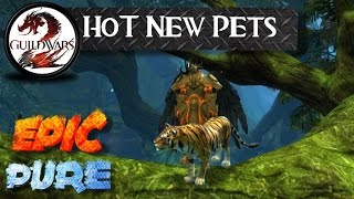 [Guild Wars 2] Heart of Thorns - How to get 5 New Ranger Pets