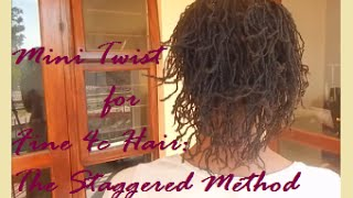 Mini Twists for Fine 4c Hair: The Staggered Method