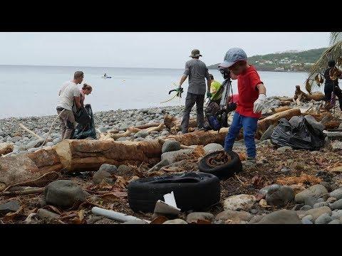 Opération nettoyage de plage à Pointe Noire Guadeloupe (SEPT 17)
