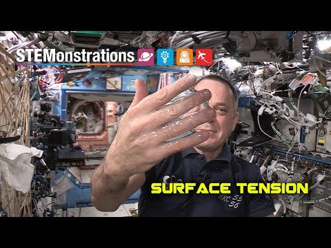 STEMonstrations: Surface Tension