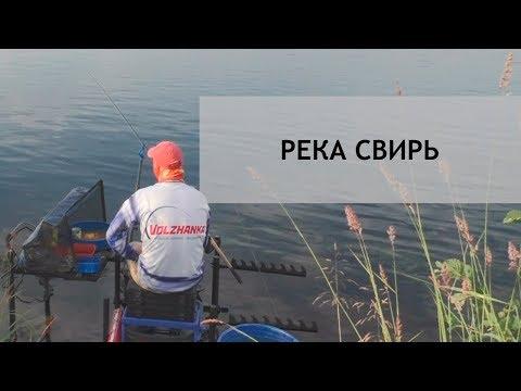 Рыболовное путешествие. Часть 1. С фидером на Свири