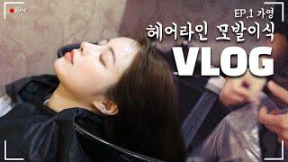 [헤어라인교정 Vlog] 감탄만 나오는 '존예' 얼굴이…
