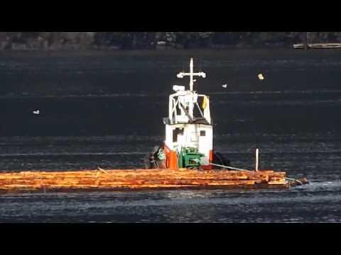 Tugboat & Log boom