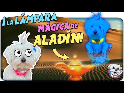 Mi PERRO pide DESEOS al GENIO de la LÁMPARA MÁGICA de ALADIN 🌟🐶Anima Dogs