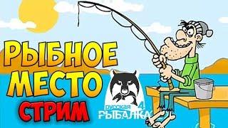 Російська Рибалка 4 Стрім ● Рибне місце