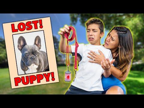 """We LOST Our DOG """"Gucci"""" (He Ran Away!) 💔 
