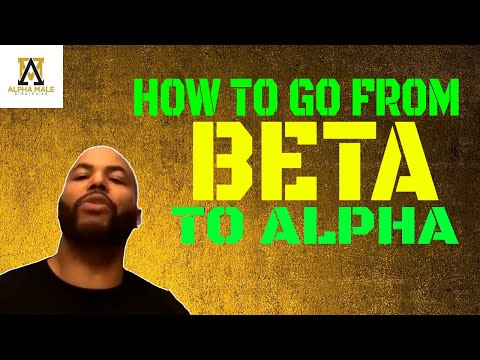 How To Go From A Beta Male To An Alpha Male
