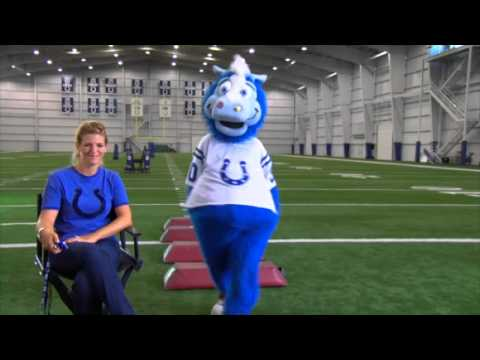 20/20 Institute - Indianapolis LASIK - Colts Mascot Blue