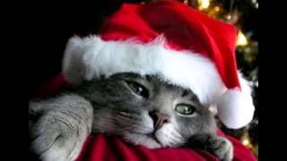 Baixar Merry Christmas Everyone Po Polsku