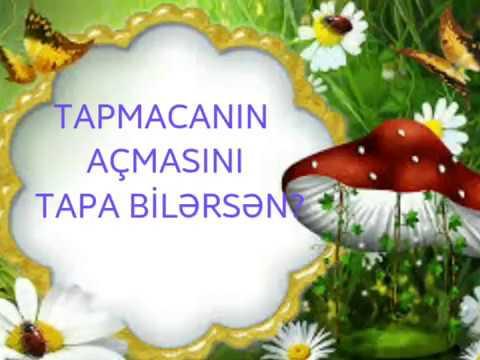 TAPMACA (MEYVƏ)