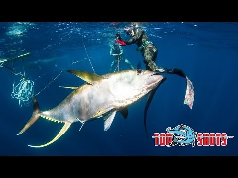 Spearfishing 100Kg Yellowfin Tuna