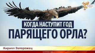 Когда наступит год парящего орла? Кирилл Запорожец и Алексей Орлов