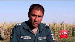 Opium Trade Funding Taliban's War In Helmand: Locals