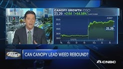 Pot stock Canopy Growth lights up on new CEO appointment