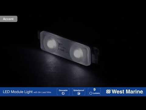 WEST MARINE Two LED Module Light, Dual Mount, Blue