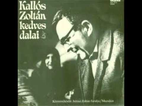 Nem ismertem az örömet Kallós Zoltán