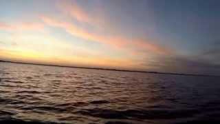 Оршинский Мох 11.2015  Ч3   Orsha Moss Swamp