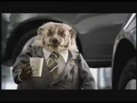 Wiggle Room Grady The Badger Johnson Automotive Commercial Youtube