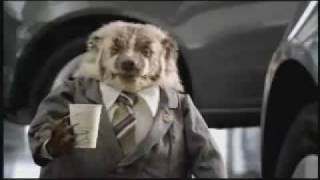 """Wiggle Room"" Grady the Badger Johnson Automotive Commercial"