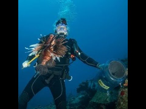 LIONFISH HUNTING SCUBA DIVERS KILL 275 LIONFISH IN ONE DAY- PENSACOLA, FLORIDA