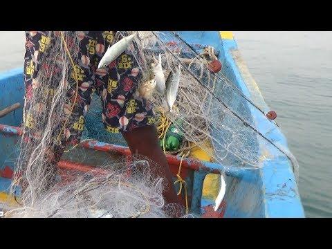 NET FISHING AT DEEP SEA