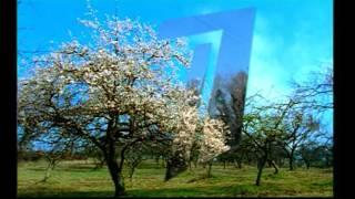 Заставка ОРТ( первый канал) 2002