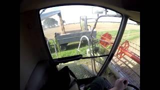Let's Drive: Cabview Claas Lexion 440 im Weizen
