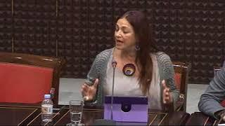 María del Río (Podemos) sobre la situación de la sanidad en Lanzarote