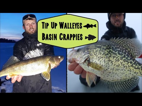 Ice Fishing For Shallow Walleyes And Basin Crappies