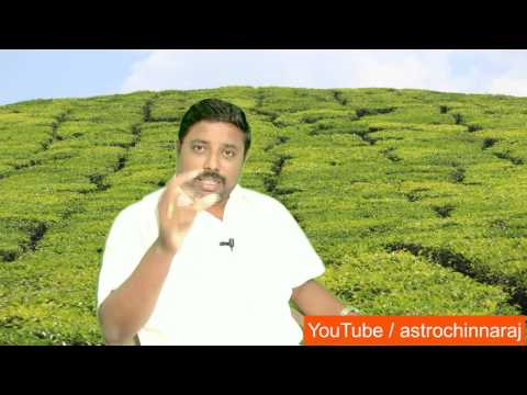 Rahu Kethu Transit 2017 Thulam by DINDIGUL P.CHINNARAJ ASTROLOGER INDIA
