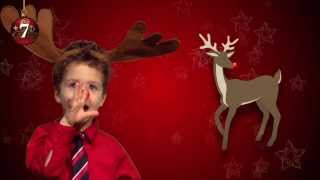 25 Signs of Christmas in ASL