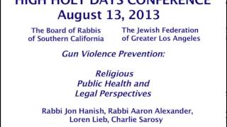 Gun Violence Prevention: Religious, Public Health and Legal Perspectives (Panel Session)