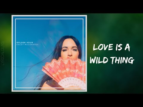 Kacey Musgraves - Love Is a Wild Thing (Lyrics)