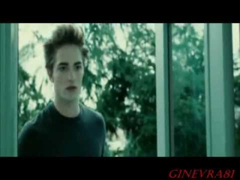 Twilight- LOVE&BLOOD