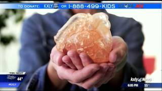 3D printing technology helps cardiologists save lives