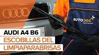 Cómo y cuándo cambiar Escobillas de parabrisas traseras y delanteras AUDI A4 (8E2, B6): vídeo tutorial