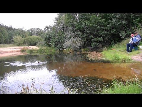 ловля щуки с берега на поплавочную удочку