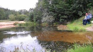 Щука на живца поплавочной удочкой