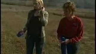 Ontario Elite Dog Training Feature On Peterborough Chex-tv Newswatch @ 5:30