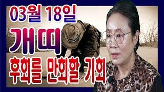 2020년 03월 18일 오늘의 운세 띠별 운세 개띠 어제의 후회를 만회할 기회가 생긴다 수미산당 구슬보살 …