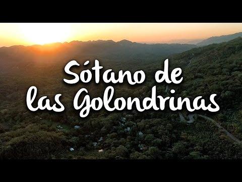Sótano de las Golondrinas, Huasteca Potosina