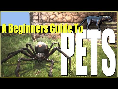 How To Raise Pets - A Beginners Guide Tutorial   Conan Exiles
