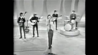 Rolling Stones - Everybody Need Somebody To Love (Ed Sullivan Show '65)