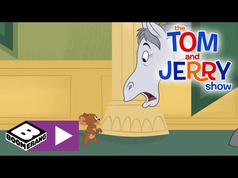 The Tom and Jerry Show  | Tom Hunts Down A Horse | Boomerang UK 🇬🇧