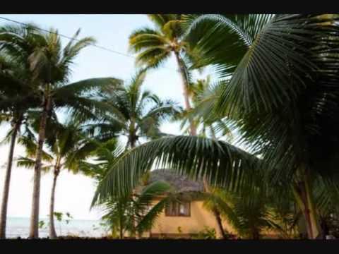 RESORT SAMOA| LE VASA RESORT|COCONUT TREES|SAMOA VACATION HOLIDAY