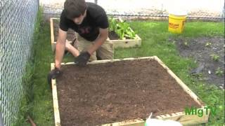 How To Build Square Foot Garden Raised Beds From Start To Finish