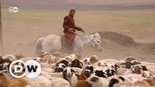 Moğol çiftçiler geleceklerini kurtarmaya çalışıyor - DW Türkçe