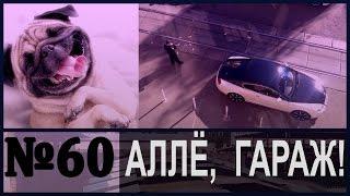АЛЛЁ, ГАРАЖ! Собака Путина и Бентли под мухой.