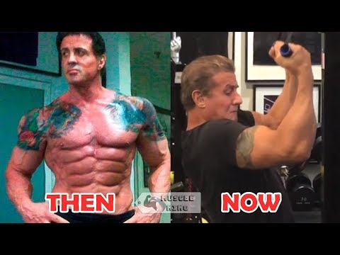 Creed 2 : Sylvester Stallone Workout GYM At Age 72 - Age ...
